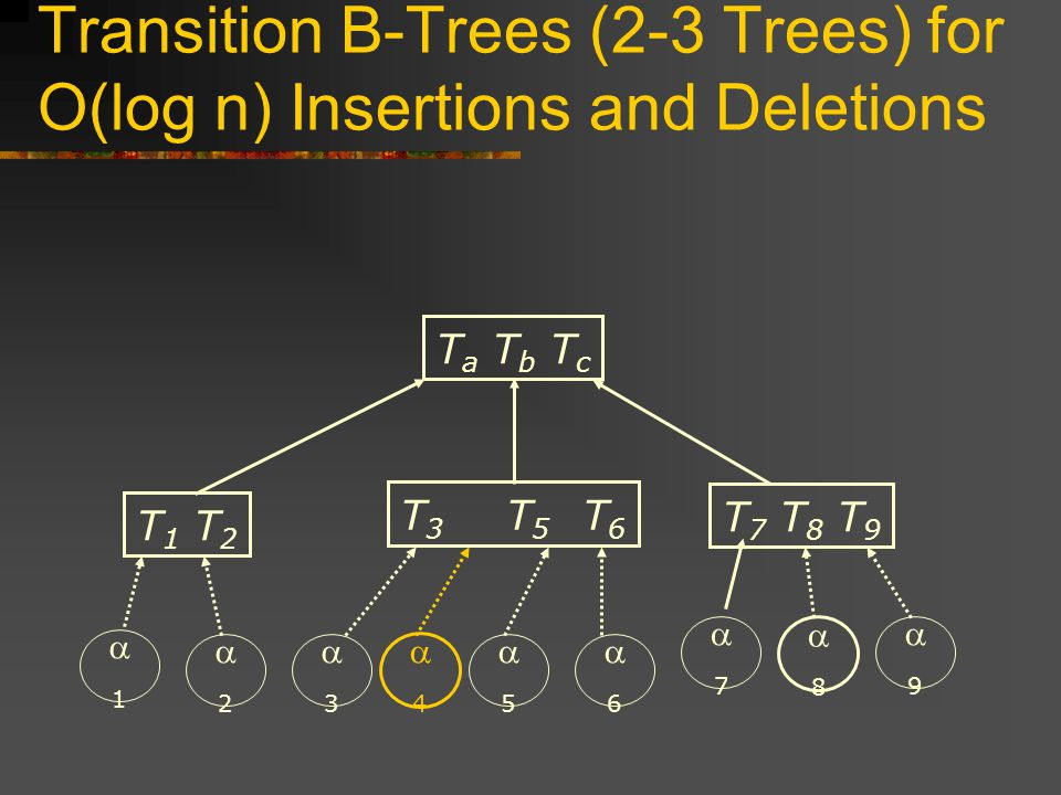 Transition B-Trees (2-3 Trees) for O(log n) Insertions and Deletions T 1 T 2 T 7 T 8 T 9 T a T b T c T 3 T 5 T 6