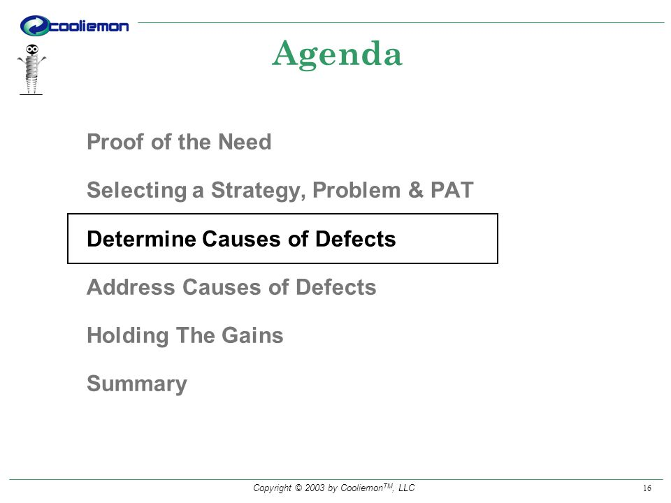 Copyright © 2003 by Cooliemon TM, LLC 16 Agenda Proof of the Need Selecting a Strategy, Problem & PAT Determine Causes of Defects Address Causes of Defects Holding The Gains Summary