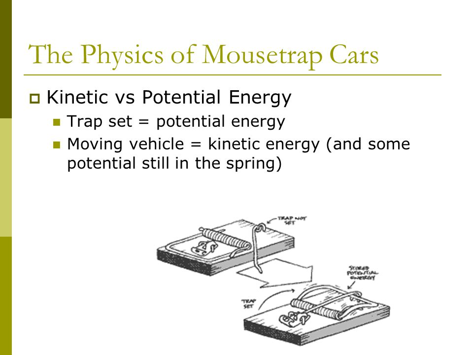The Physics of Mousetrap Cars Kinetic vs Potential Energy Trap set = potential energy Moving vehicle = kinetic energy (and some potential still in the spring)