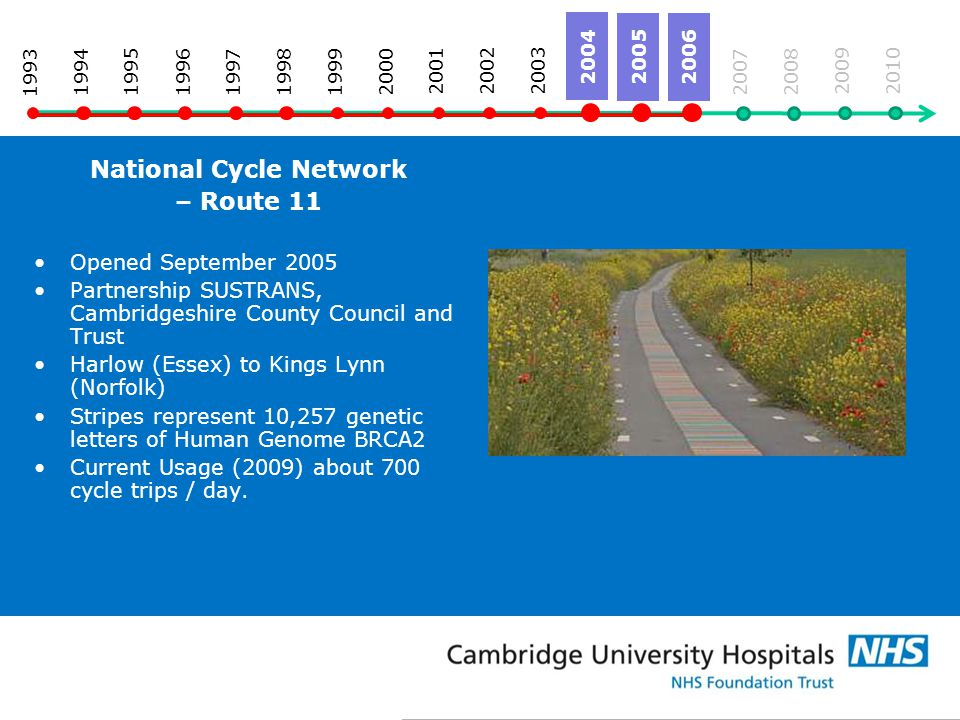 National Cycle Network – Route 11 Opened September 2005 Partnership SUSTRANS, Cambridgeshire County Council and Trust Harlow (Essex) to Kings Lynn (Norfolk) Stripes represent 10,257 genetic letters of Human Genome BRCA2 Current Usage (2009) about 700 cycle trips / day.