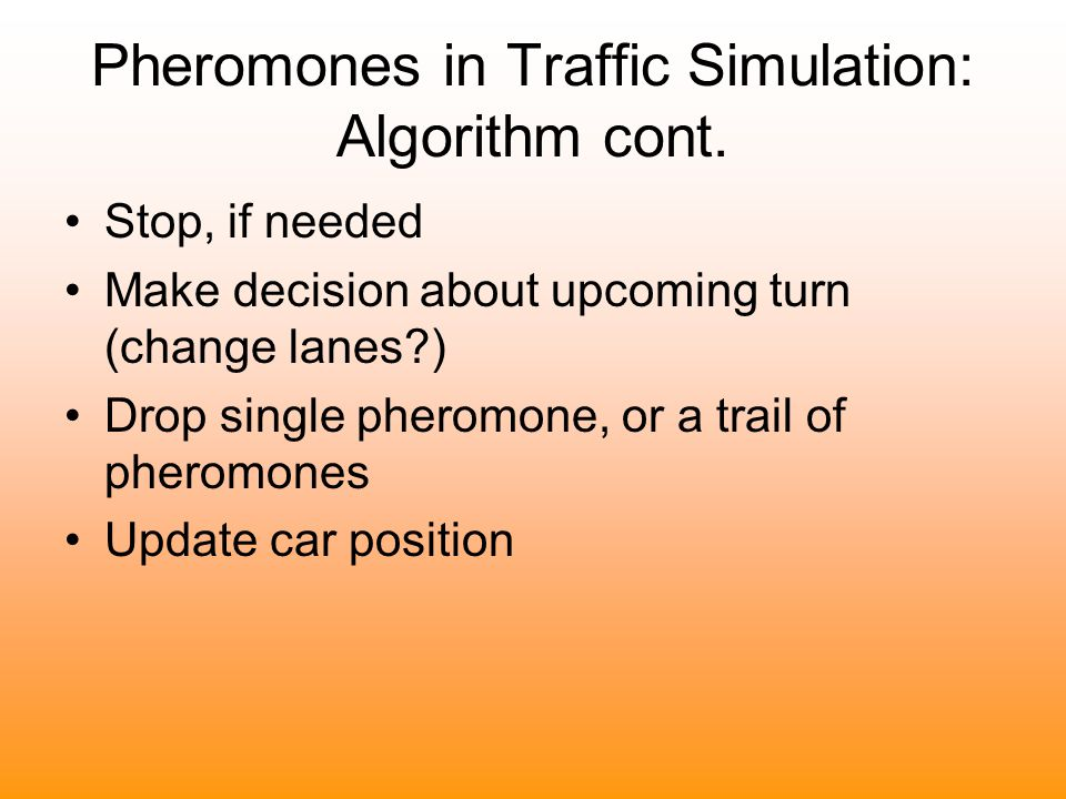 Pheromones in Traffic Simulation: Algorithm cont. Stop, if needed Make decision about upcoming turn (change lanes?) Drop single pheromone, or a trail