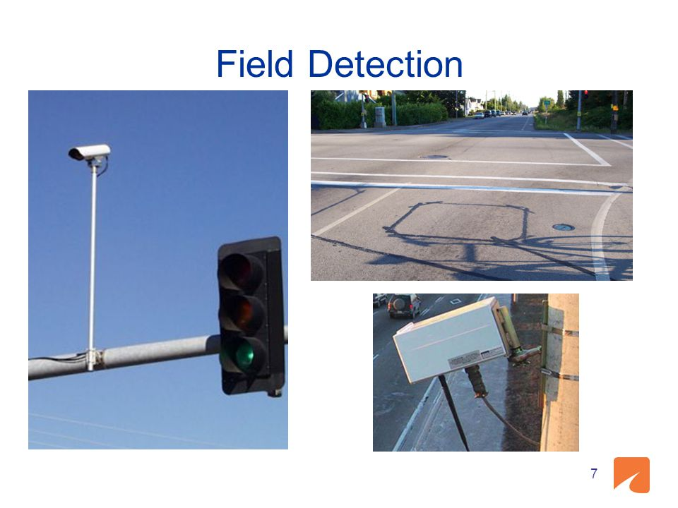 Field Detection 7