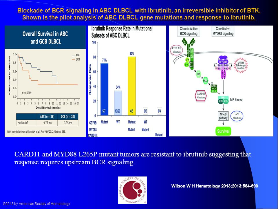 Blockade of BCR signaling in ABC DLBCL with ibrutinib, an irreversible inhibitor of BTK.