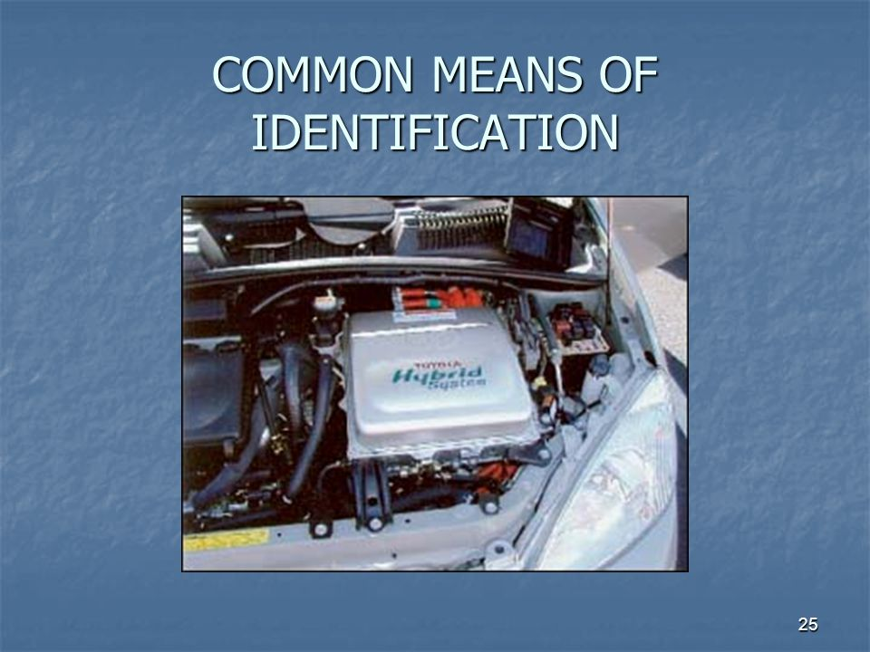 25 COMMON MEANS OF IDENTIFICATION