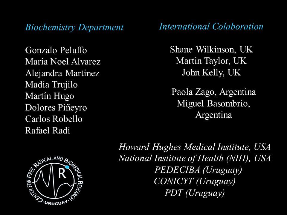 Howard Hughes Medical Institute, USA National Institute of Health (NIH), USA PEDECIBA (Uruguay) CONICYT (Uruguay) PDT (Uruguay) Biochemistry Departmen