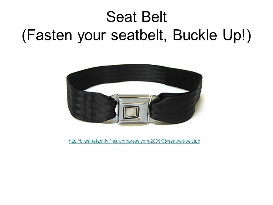 Seat Belt (Fasten your seatbelt, Buckle Up!) http://blissthefamily.files.wordpress.com/2009/06/seatbelt-belt.jpg