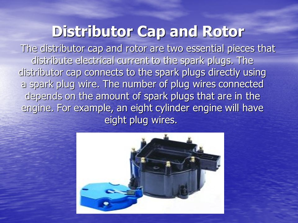 Distributor Cap and Rotor The distributor cap and rotor are two essential pieces that distribute electrical current to the spark plugs.