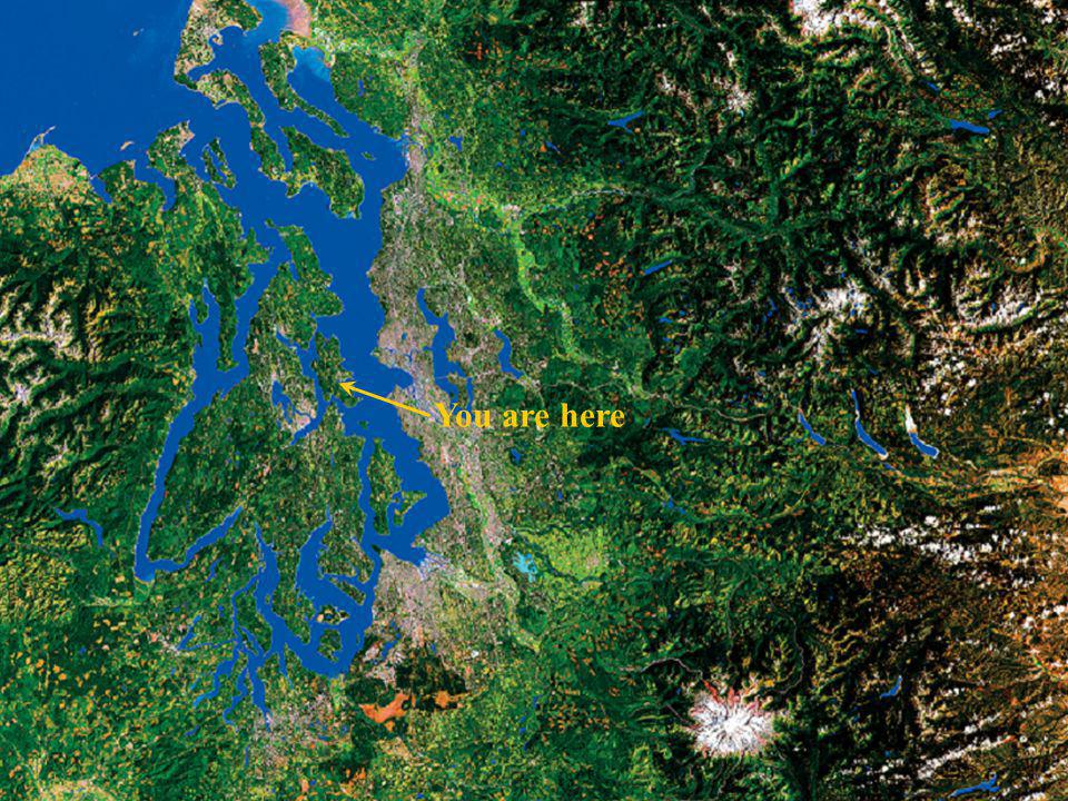 Puget Sound From Space You are here