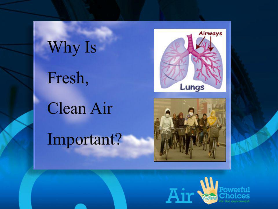 Why is Fresh, Clean Air Important Why Is Fresh, Clean Air Important
