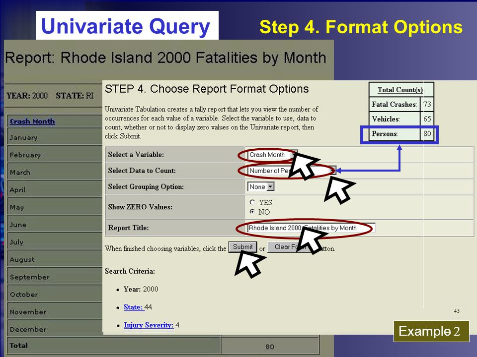 Univariate Query Step 4. Format Options Example 2 43