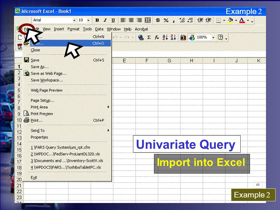 Example 2 Univariate Query Import into Excel Example 2 48