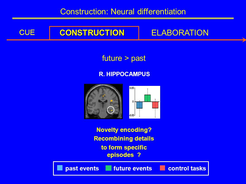 Construction: Neural differentiation CUE CONSTRUCTIONELABORATION future > past R.