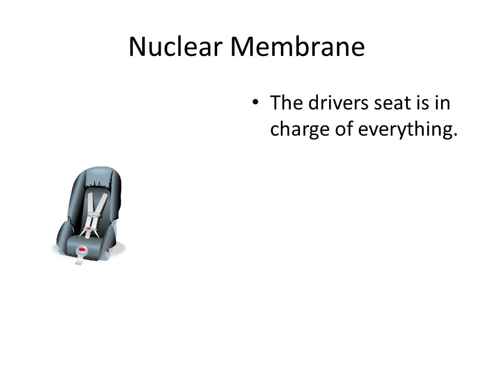 Nucleus The engine is like the nucleus because it is in charge of every thing.