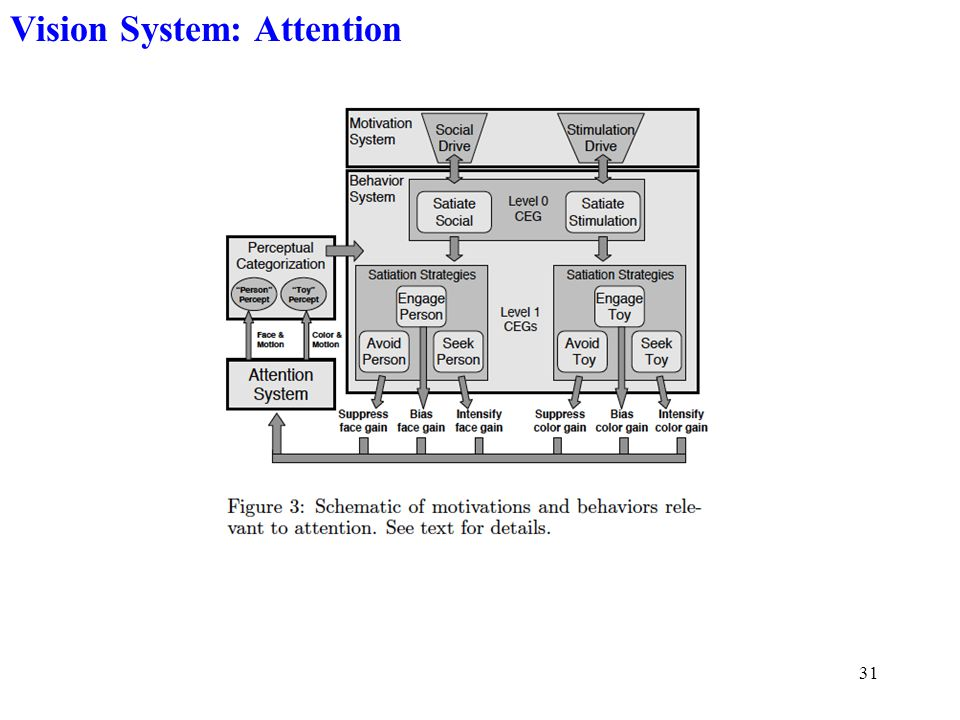 31 Vision System: Attention