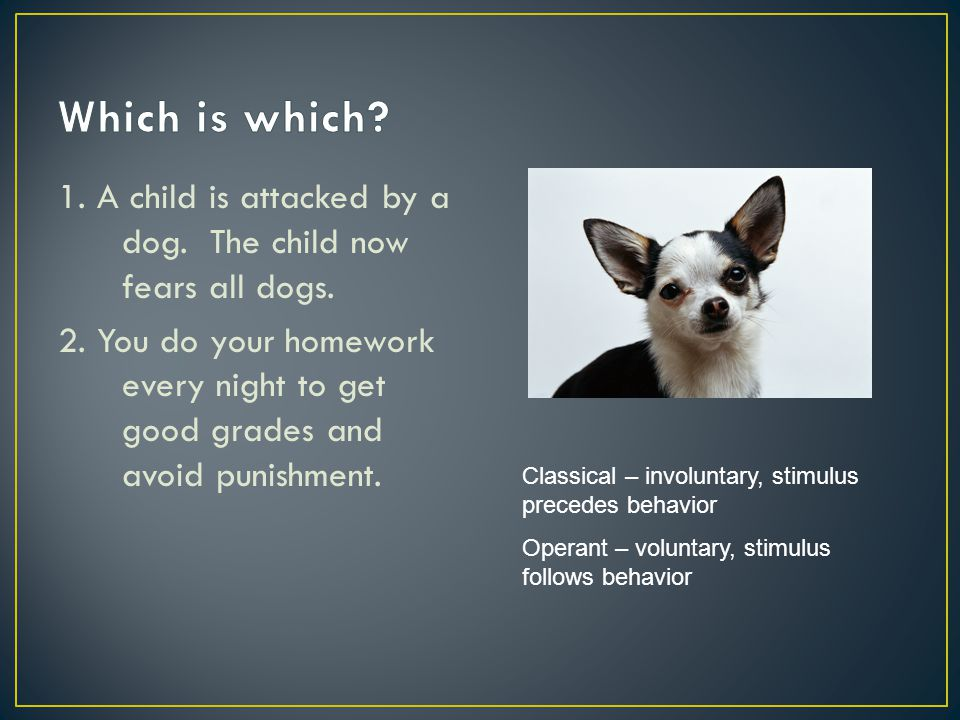 1. A child is attacked by a dog. The child now fears all dogs. 2. You do your homework every night to get good grades and avoid punishment. Classical