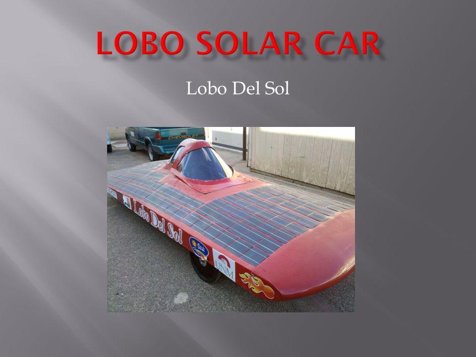 Lobo Del Sol