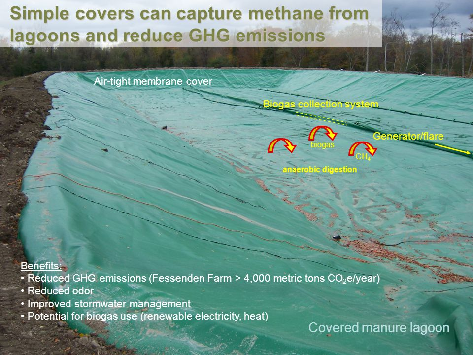 Covered manure lagoon Biogas collection system Generator/flare Benefits: Reduced GHG emissions (Fessenden Farm > 4,000 metric tons CO 2 e/year) Reduce