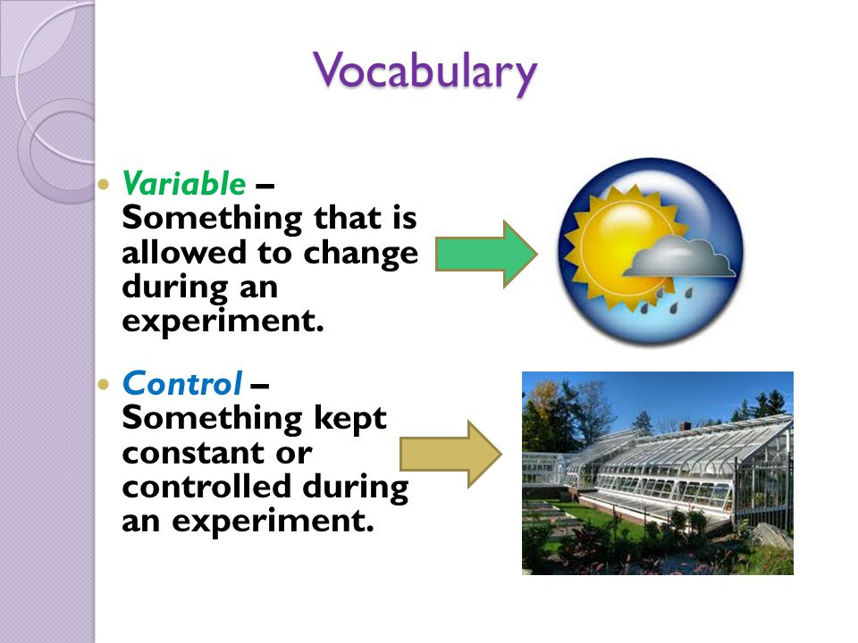 Vocabulary Variable – Something that is allowed to change during an experiment. Control – Something kept constant or controlled during an experiment.