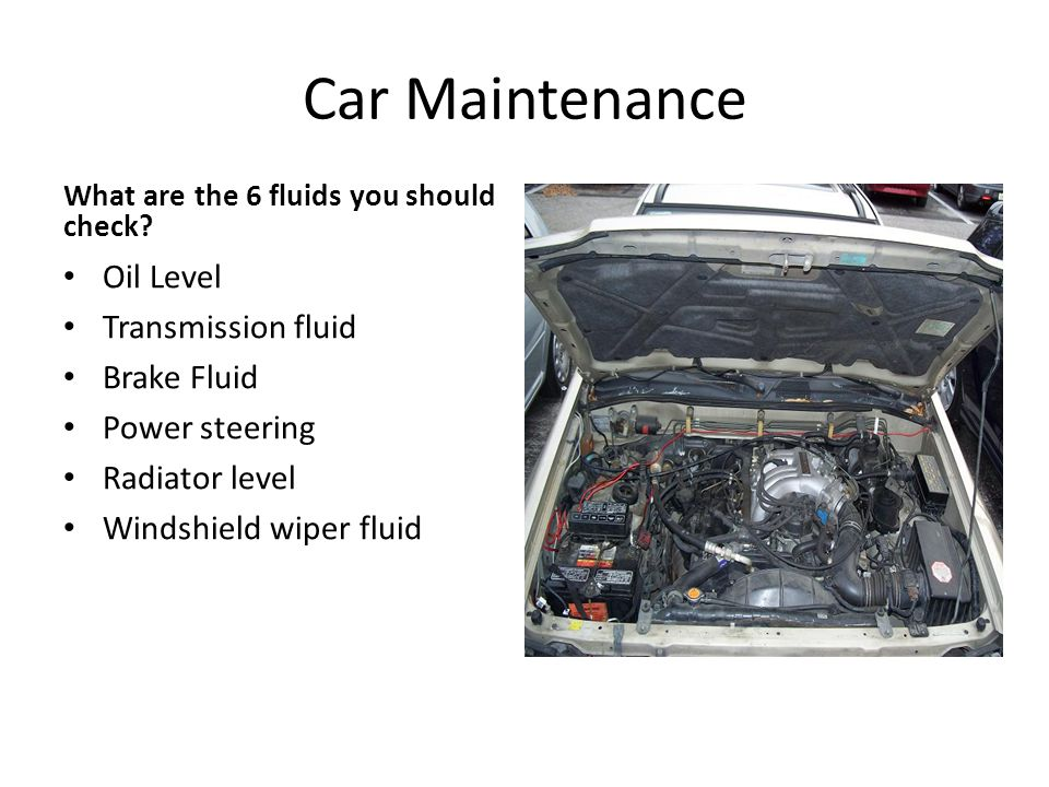 Car Maintenance What are the 6 fluids you should check.