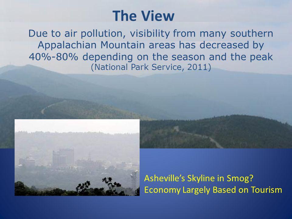 Ashevilles Skyline in Smog.