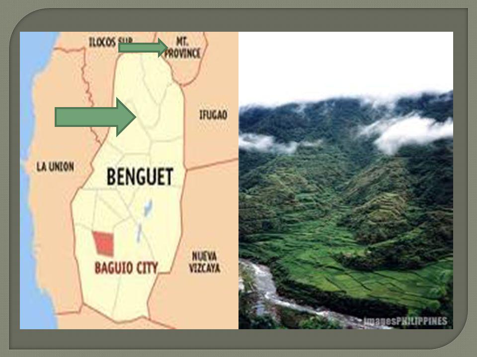 Located in some northern parts of Benguet, and in the Western Mountain Province. Built sloping terraces to maximize the farm space. The land they live