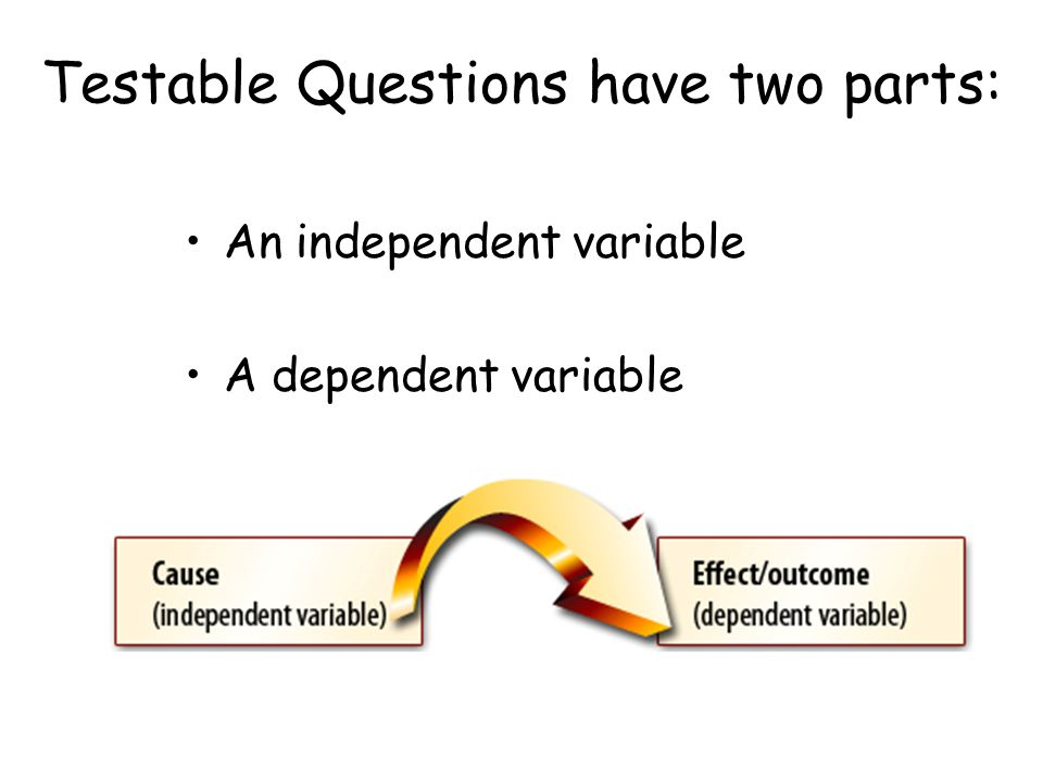 Testable Questions have two parts: An independent variable A dependent variable