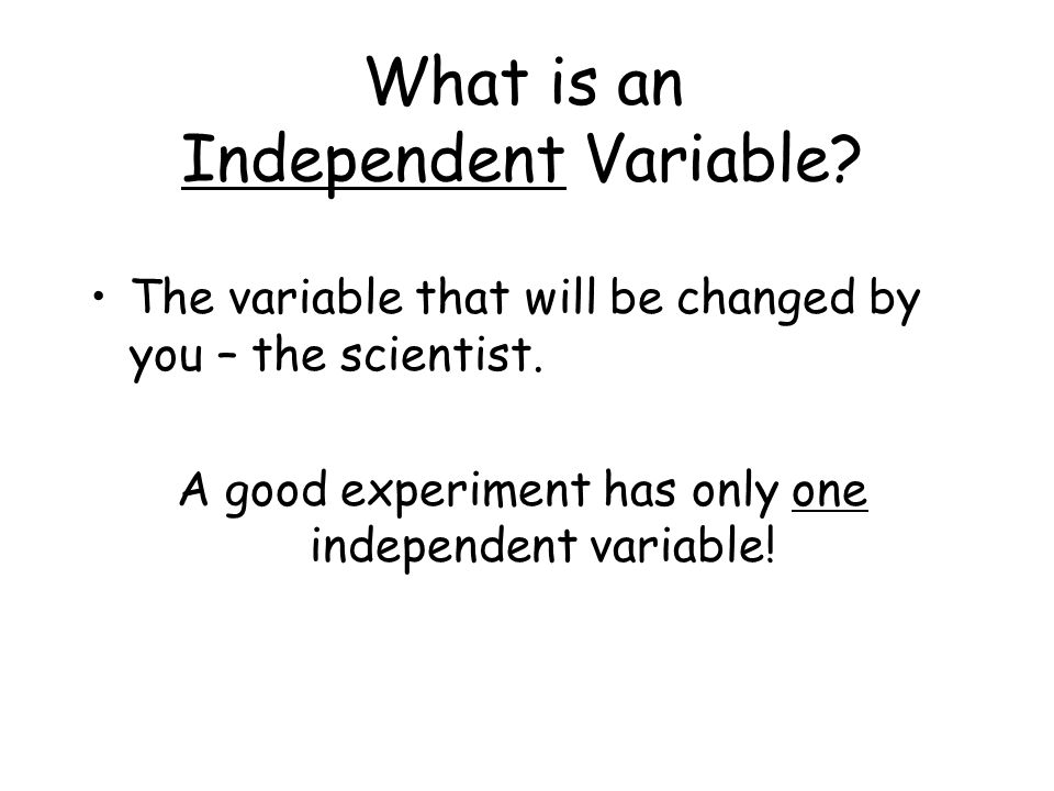 What is an Independent Variable.The variable that will be changed by you – the scientist.