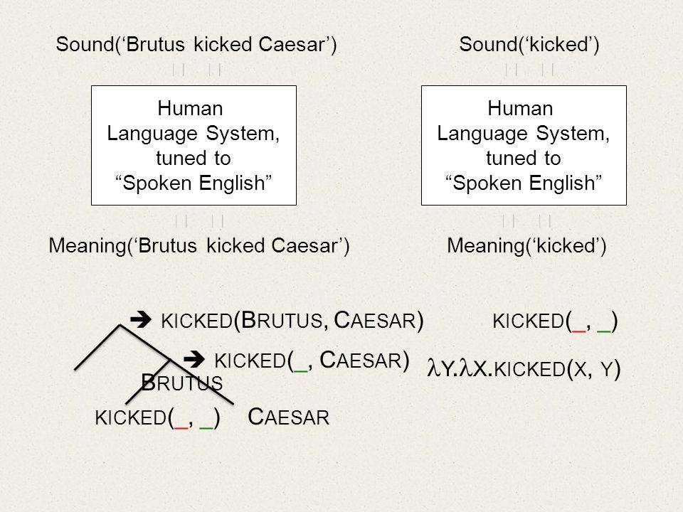 Human Language System, tuned to Spoken English Sound(Brutus kicked Caesar) Meaning(Brutus kicked Caesar) B RUTUS KICKED (_, _) C AESAR KICKED (B RUTUS, C AESAR ) Human Language System, tuned to Spoken English Sound(kicked) Meaning(kicked) KICKED (_, C AESAR ) KICKED (_, _) Y.