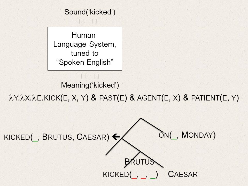 Human Language System, tuned to Spoken English Sound(kicked) Meaning(kicked) B RUTUS KICKED (_, _, _) C AESAR ON (_, M ONDAY ) KICKED (_, B RUTUS, C AESAR ) Y.