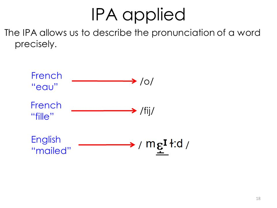 IPA applied The IPA allows us to describe the pronunciation of a word precisely.