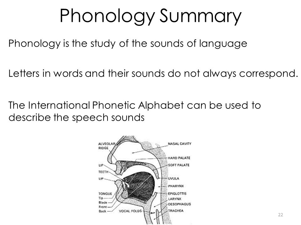 Phonology Summary Phonology is the study of the sounds of language 22 Letters in words and their sounds do not always correspond.