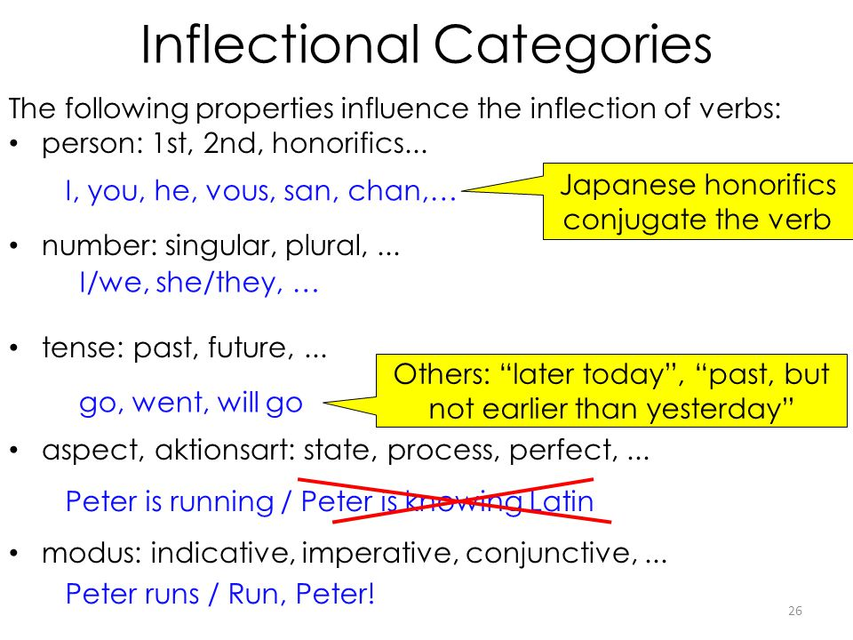 Inflectional Categories 26 The following properties influence the inflection of verbs: person: 1st, 2nd, honorifics... number: singular, plural,... te