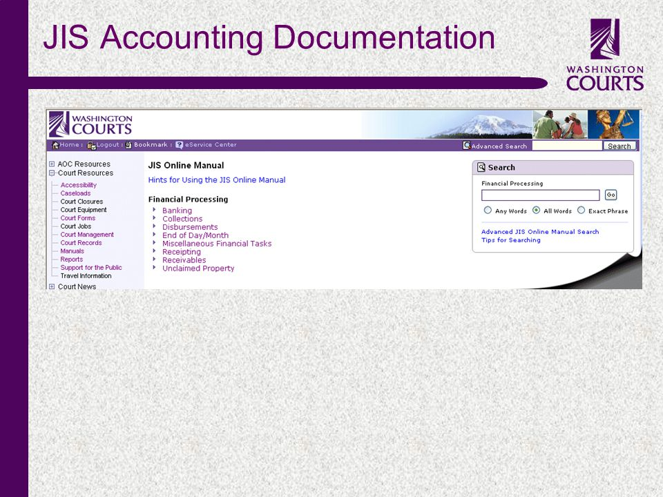 c JIS Accounting Documentation