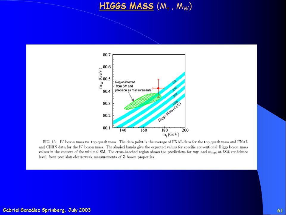 Gabriel González Sprinberg, July 2003 61 HIGGS MASS HIGGS MASS (M t, M W )