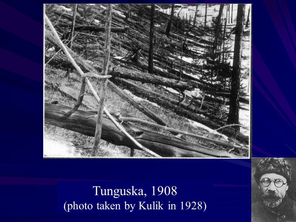 Tunguska, 1908 (photo taken by Kulik in 1928)