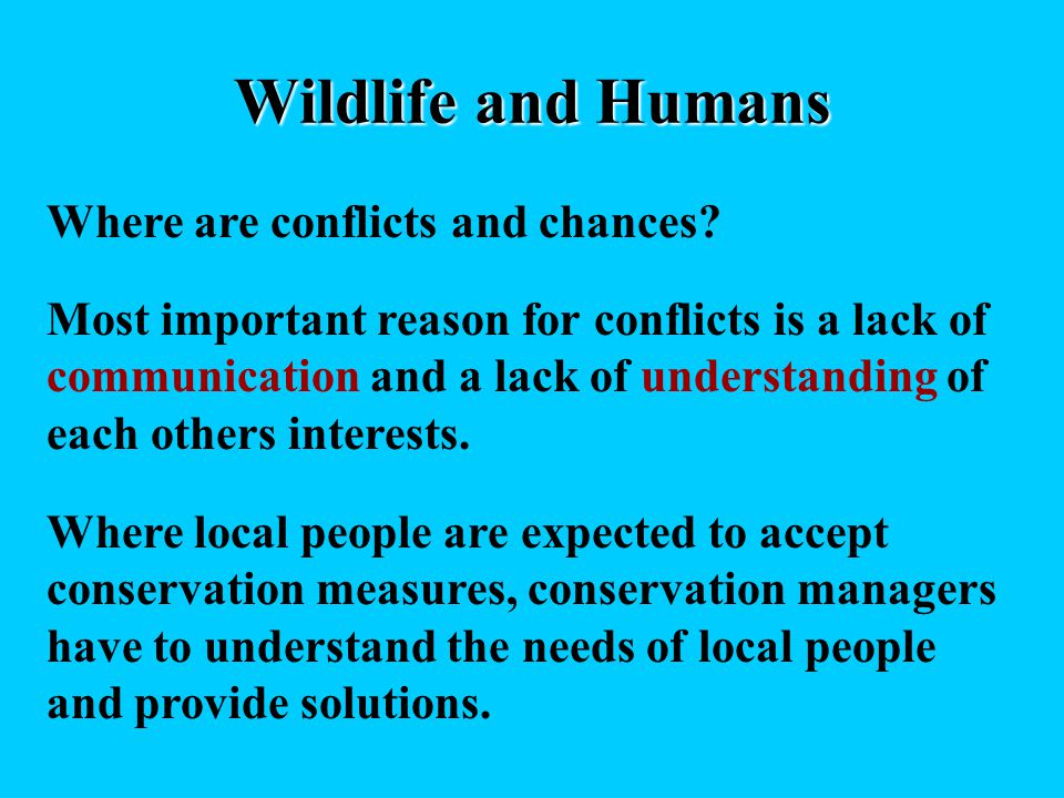 Wildlife and Humans Where are conflicts and chances? Most important reason for conflicts is a lack of communication and a lack of understanding of eac