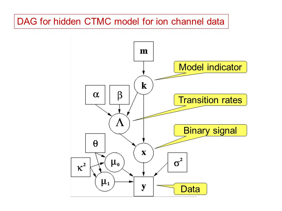 DAG for hidden CTMC model for ion channel data Binary signal Data Model indicator Transition rates