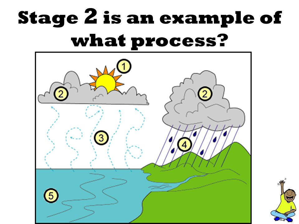 Stage 2 is an example of what process