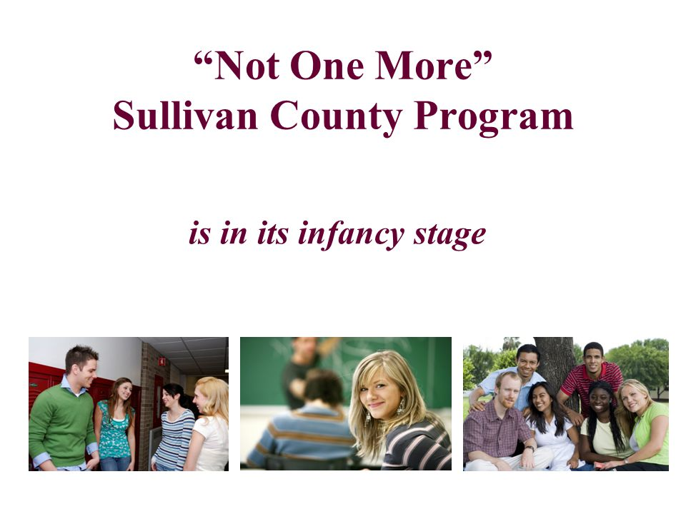 Not One More Sullivan County Program is in its infancy stage