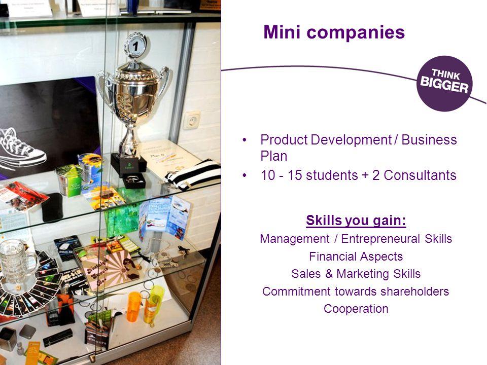 Mini companies Product Development / Business Plan 10 - 15 students + 2 Consultants Skills you gain: Management / Entrepreneural Skills Financial Aspe
