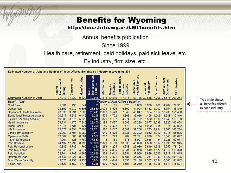 12 Benefits for Wyoming http://doe.state.wy.us/LMI/benefits.htm Annual benefits publication Since 1999 Health care, retirement, paid holidays, paid si