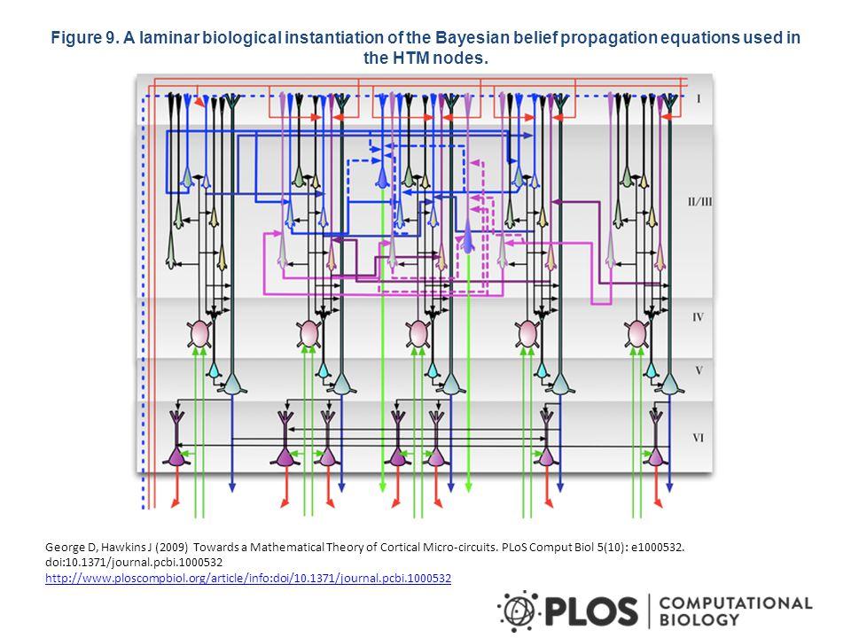 Figure 10. Columnar organization of the microcircuit.