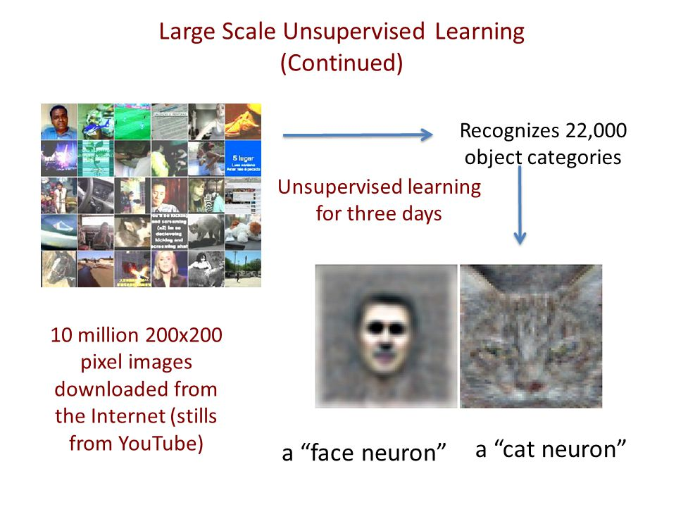 Building High-level Features Using Large Scale Unsupervised Learning Quoc V.
