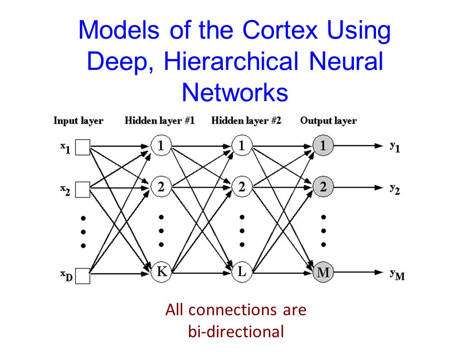 Models of the Cortex Using Deep, Hierarchical Neural Networks All connections are bi-directional