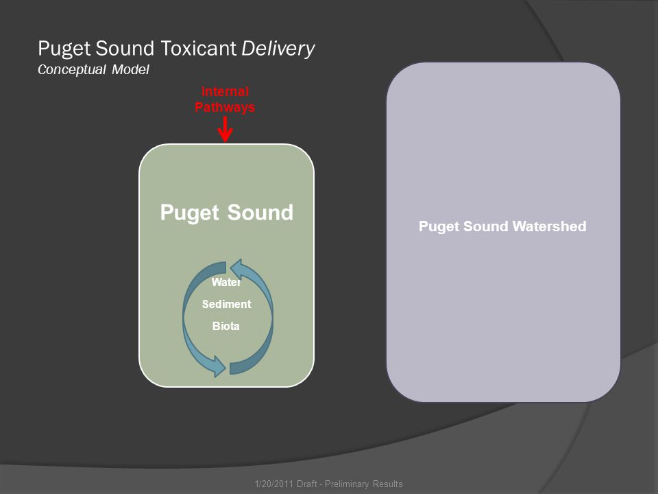 Puget Sound Watershed Puget Sound Water Sediment Biota Puget Sound Toxicant Delivery Conceptual Model Internal Pathways 1/20/2011 Draft - Preliminary Results