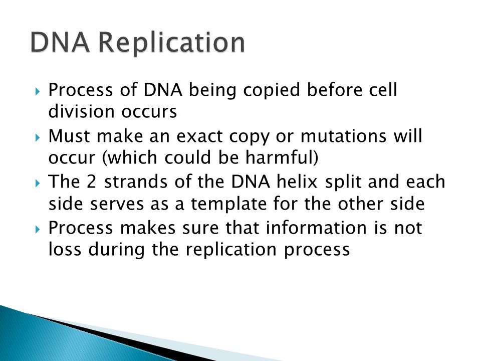 Process of DNA being copied before cell division occurs Must make an exact copy or mutations will occur (which could be harmful) The 2 strands of the DNA helix split and each side serves as a template for the other side Process makes sure that information is not loss during the replication process