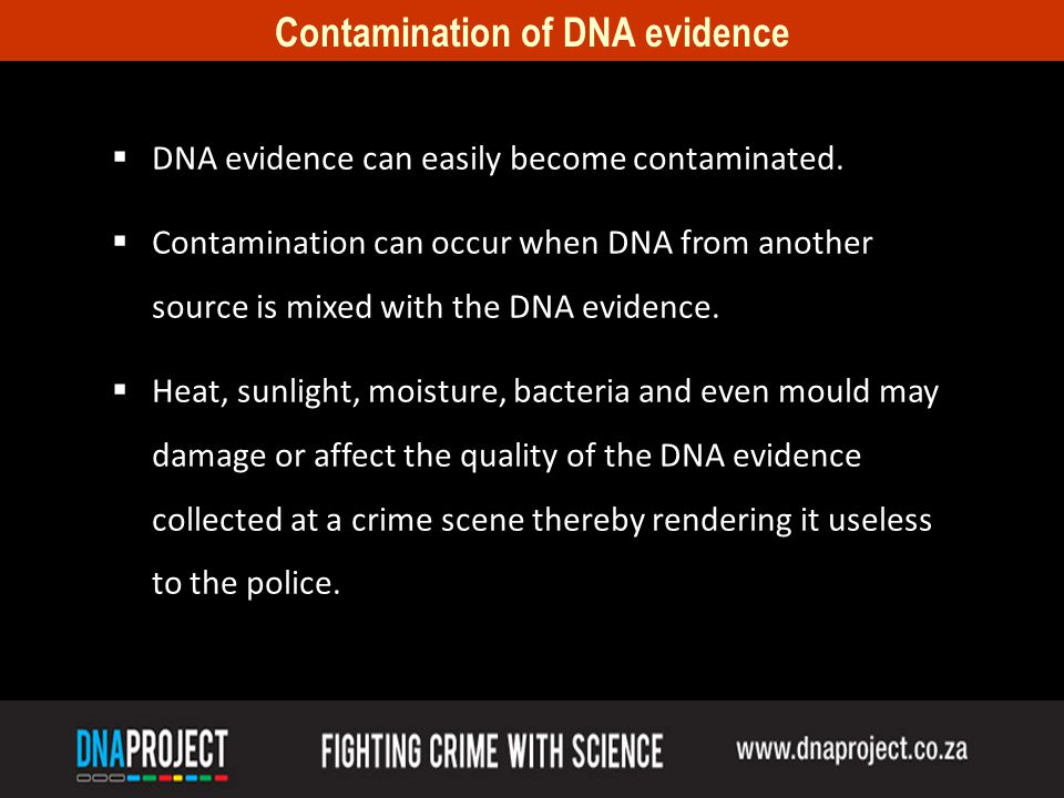 Contamination of DNA evidence DNA evidence can easily become contaminated.