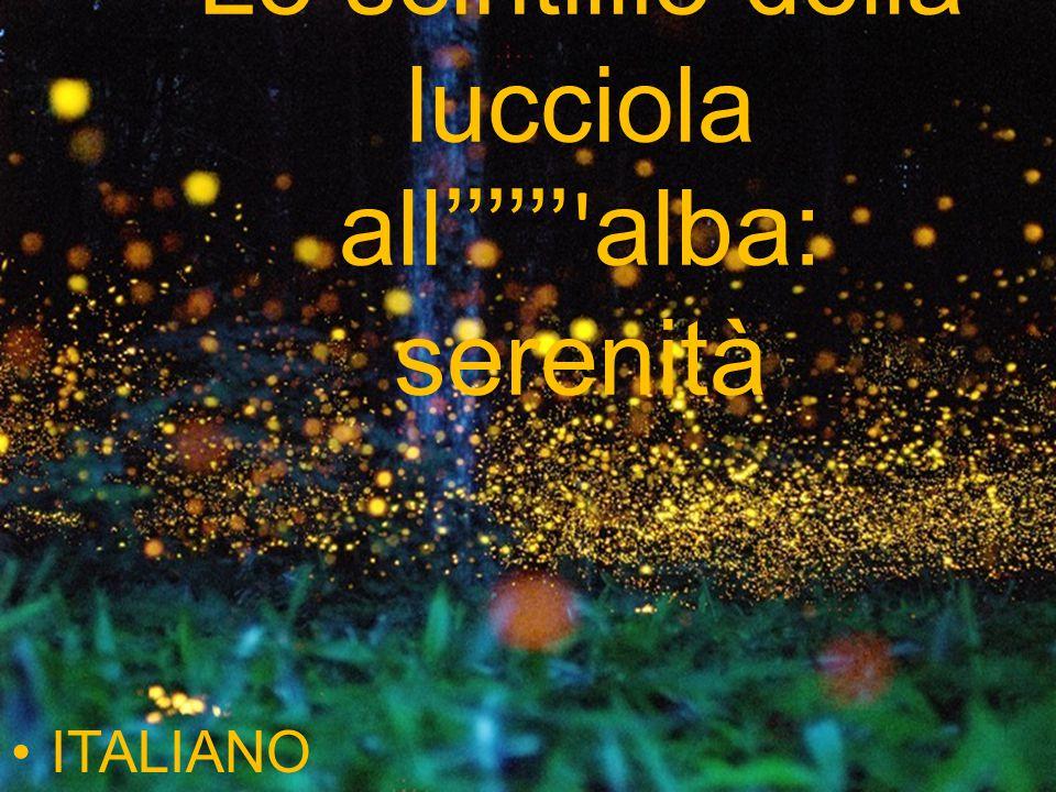Lo scintillio della lucciola all alba: serenità ITALIANO