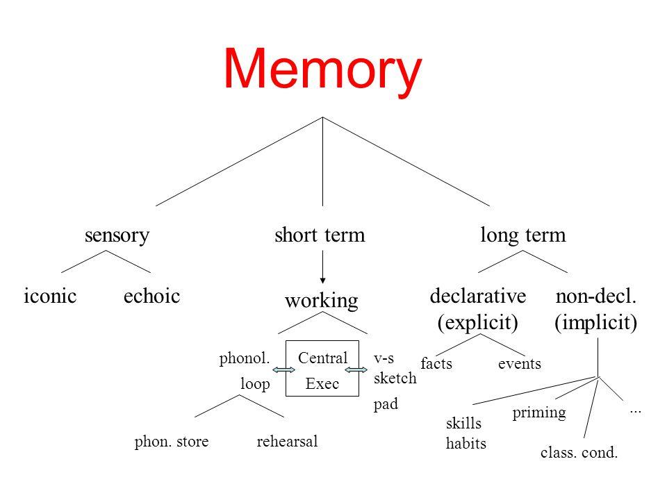 Memory sensoryshort termlong term working iconicechoic phonol.