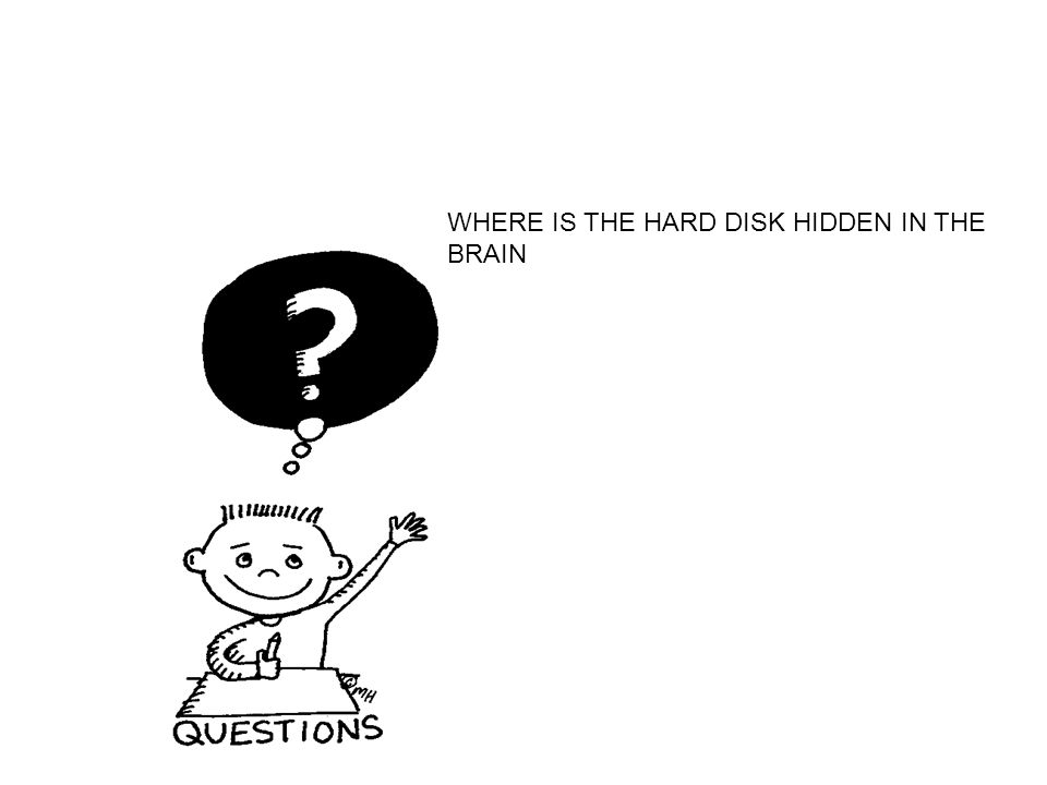 WHERE IS THE HARD DISK HIDDEN IN THE BRAIN